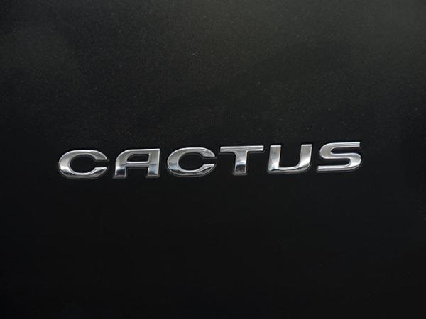 Citroen C4 C4 CACTUS 1.2 año 2017