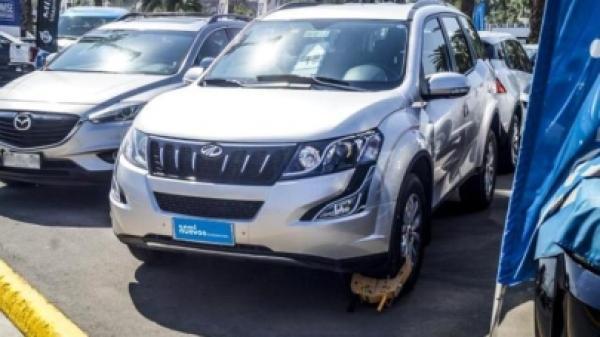 Mahindra XUV XUV500 AWD CRDE año 2016